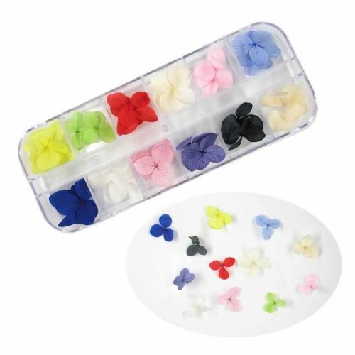Набор сухоцветов в контейнере для декора ногтей.