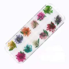 Набор сухоцветов в контейнере для декора ногтей.(подсолнухи)